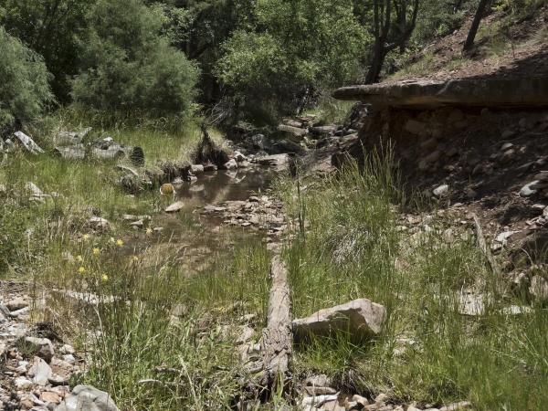 Brody Creek