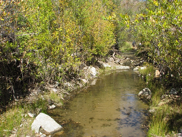 California Gulch stream
