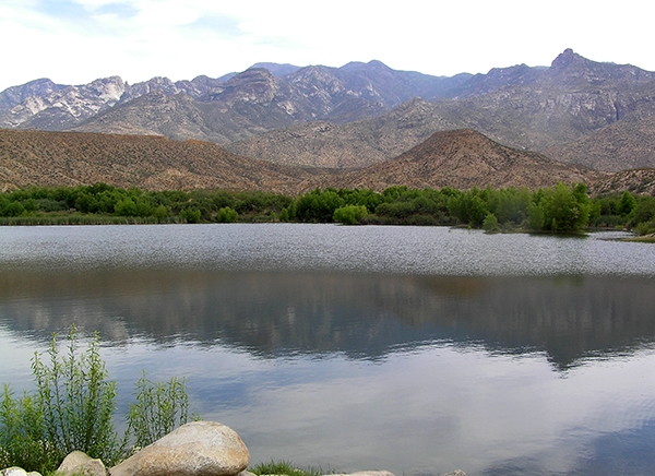 Cluff Ranch Pond