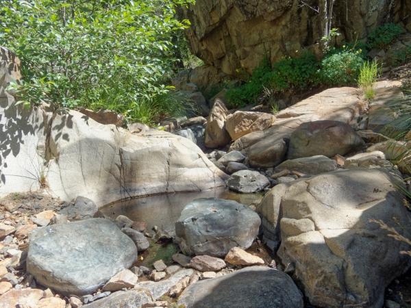 Hassayampa River - Prescott