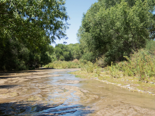 Hassayampa River - Wickenburg