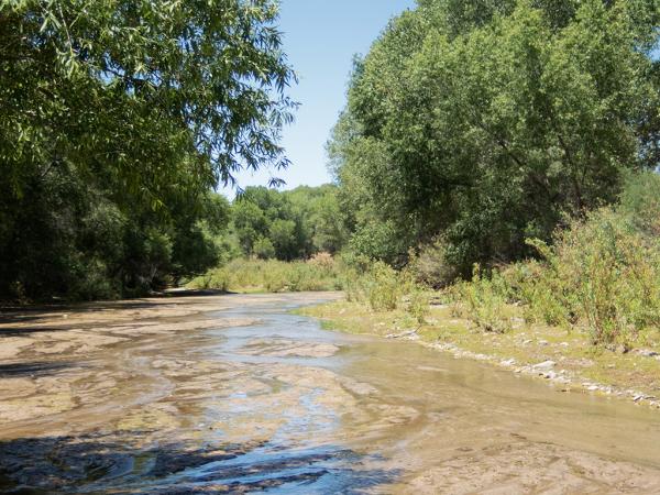 Hassayampa River - Wickenburg