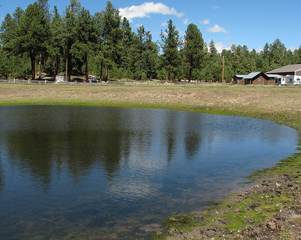 Jacob Lake