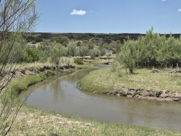 Little Colorado River along CR4008 North of Springerville