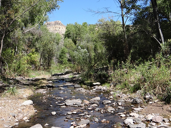 Muleshoe Ranch: Hot Springs Canyon