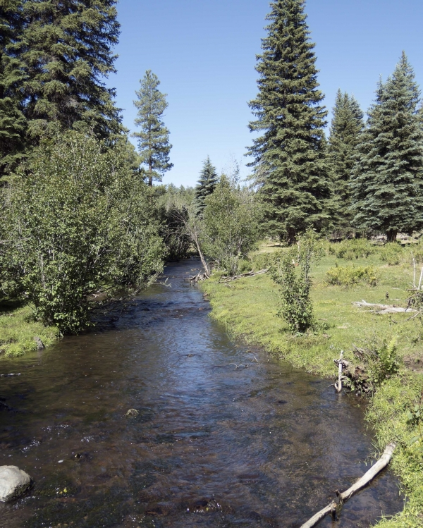 North Fork of White River