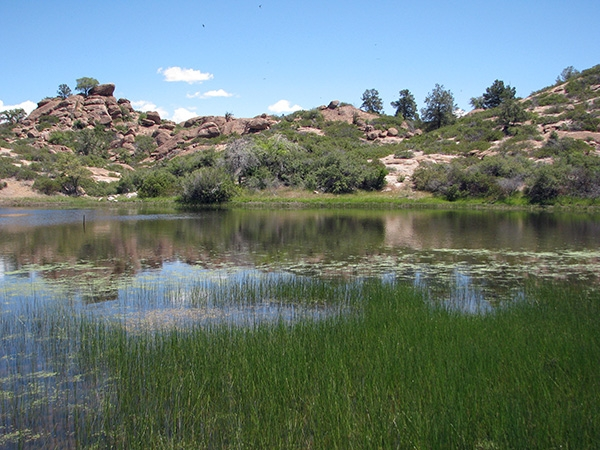 Oak Flat Mine Pond