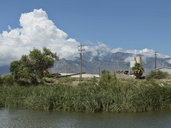 Salomon Rd Pond, Safford