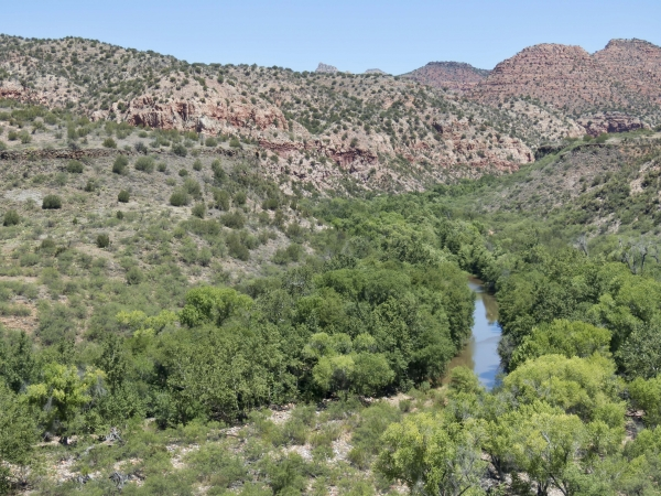 Sycamore Canyon Wilderness (Yavapai)