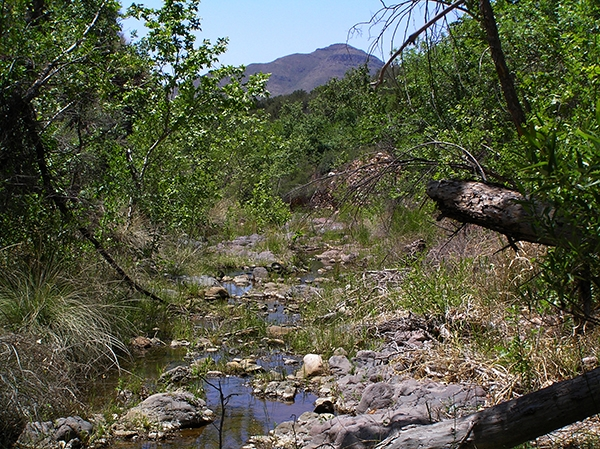Sycamore Creek, Maricopa