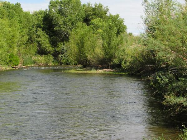 Verde River, Rio Verde