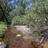 Location: Muleshoe Ranch: Bass Canyon