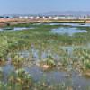 Location: Glendale Recharge Ponds