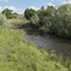 Location: Little Colorado River, Springerville