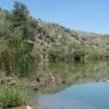 Location: Pena Blanca Lake