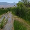 Location: Beaver Dam Wash