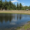 Location: Jacob Lake