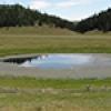 Location: Deer Lake