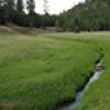 Location: Tsaile Creek, Chuska Mountains
