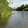 Location: Verde River, Rio Verde