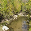 Location: California Gulch stream