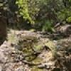Location: Garden Canyon