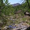 Location: Sycamore Creek, Maricopa