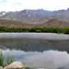 Location: Cluff Ranch Pond