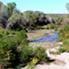 Location: Hassayampa River - Wickenburg